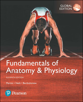 Fundamentals of Anatomy & Physiology 11/E